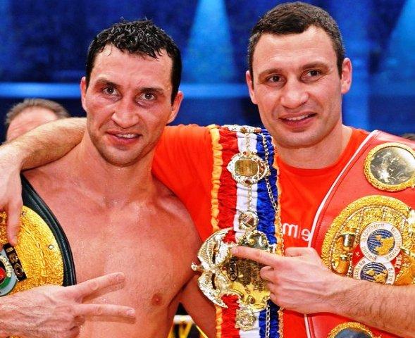 боксеры после боя