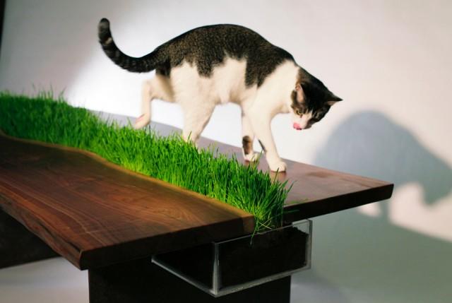 стол с газоном