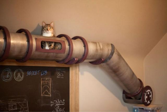 лофт для кота