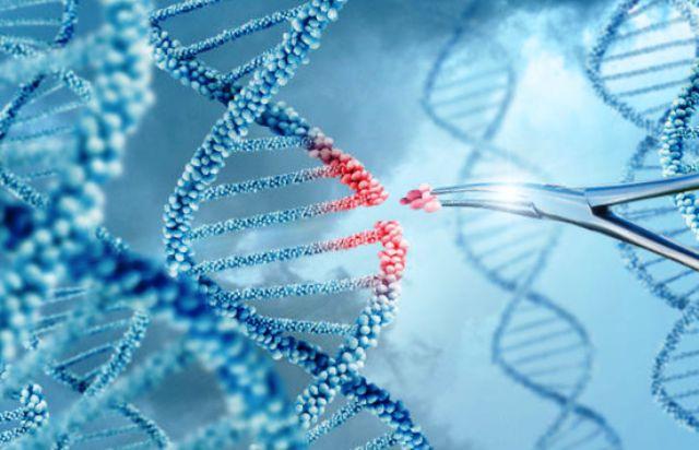 опыты на генах