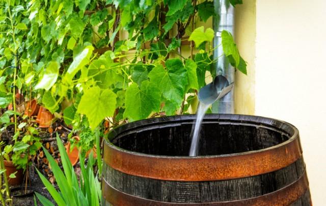бочка для воды с крыши